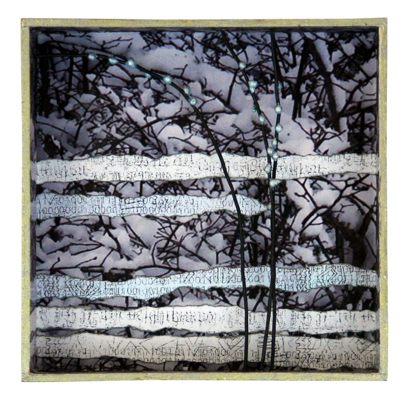 New Snow by Ashby Carlisle